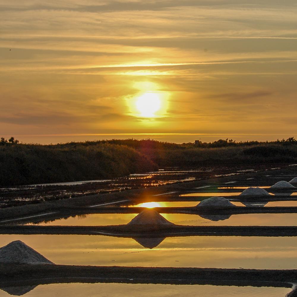 Die Salzgärten von Guérande